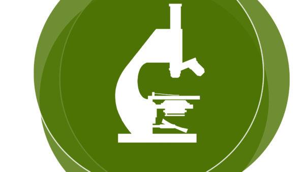 Anatomía patológica y Citodiagnóstico